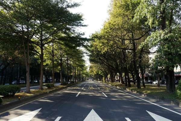 Árboles en la Ciudad