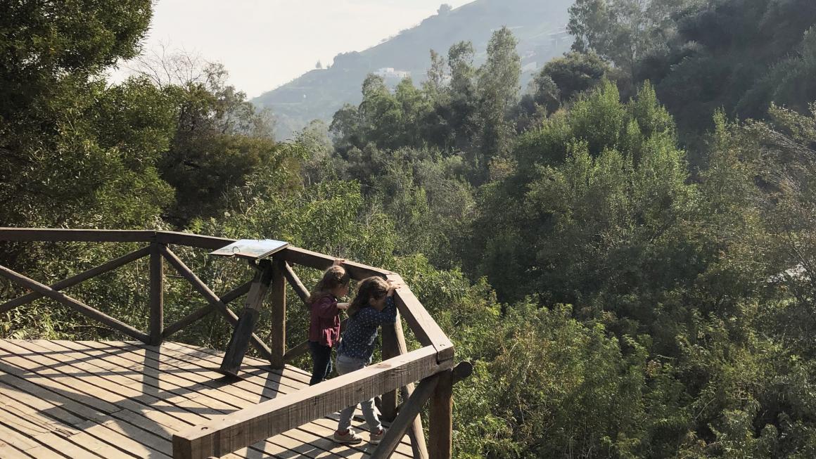 El Bosque Santiago en el Parque Metropolitano de Santiago