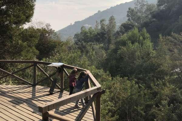 Bosque Santiago en Parquemet