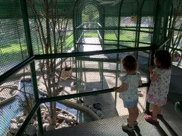 parque araucano entrekids